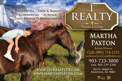 Palestine Homes for Sale. Real Estate in Palestine, Texas – Martha Paxton